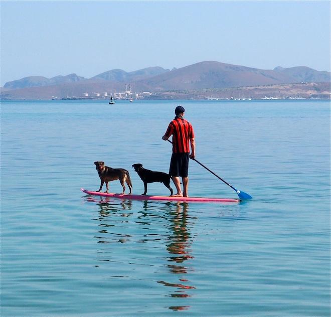 Stand Up Paddle Board, La Paz