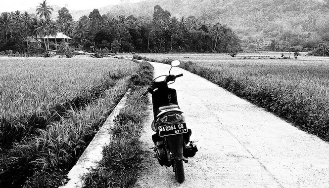 Motor bike n rice fields